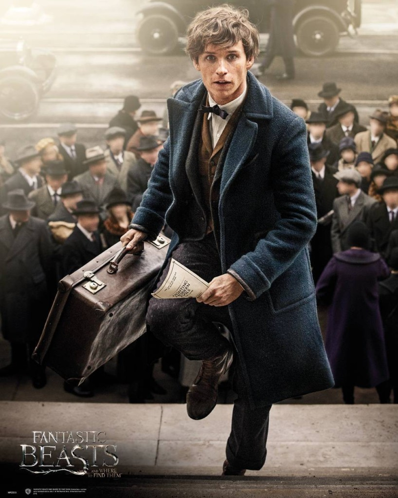 Thank You Newt Scamander – The Journo Type